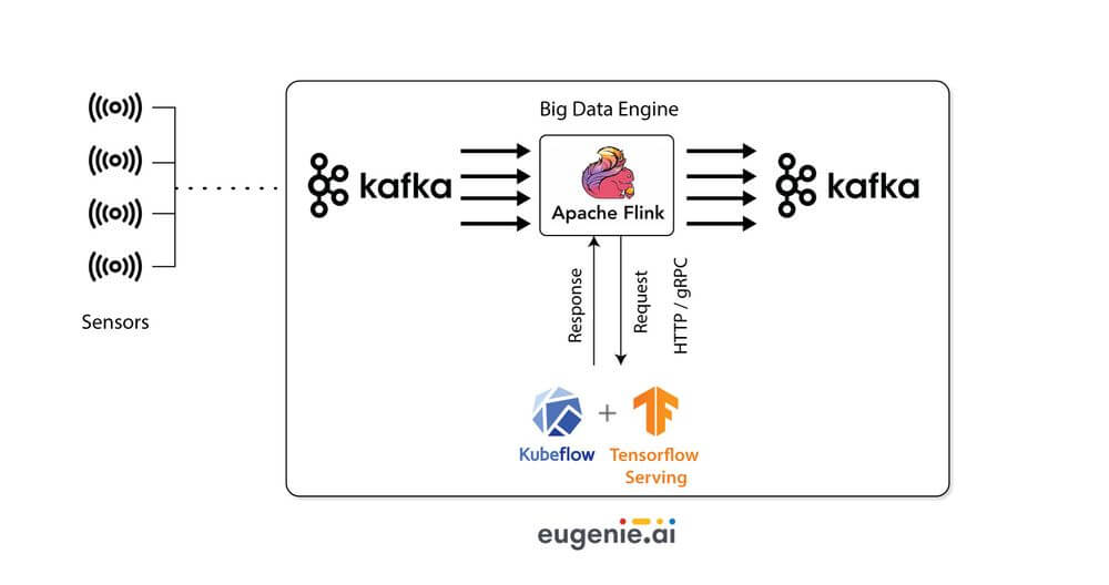 eugenie's deep learning models
